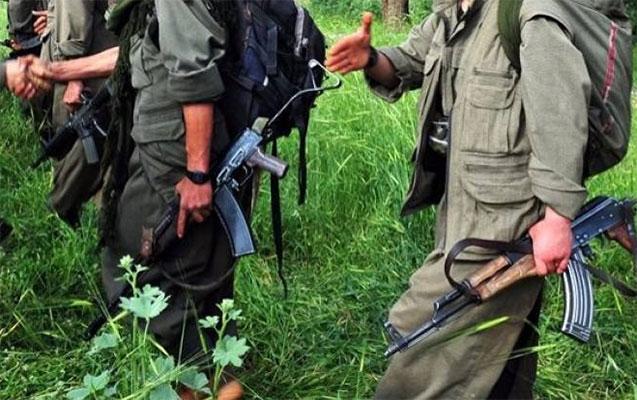 PKK-nın 13 üzvü öldürüldü