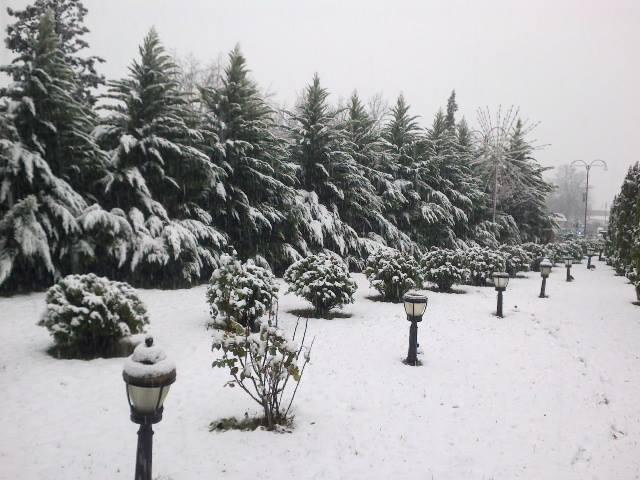 Azərbaycana qar yağır... -  Fotolar